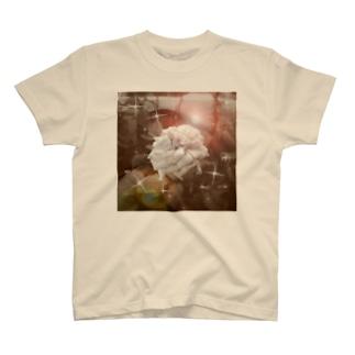 薔薇、プリントTシャツ T-shirts