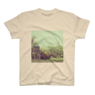 green. T-shirts