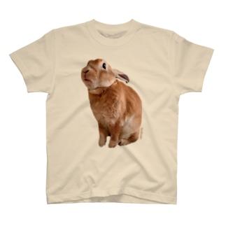 つぶあん大きめプリントT T-shirts