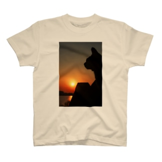 猫と夕陽とテトラポッド T-shirts