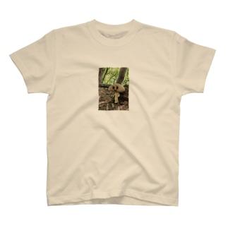 きの下 きの子 T-shirts