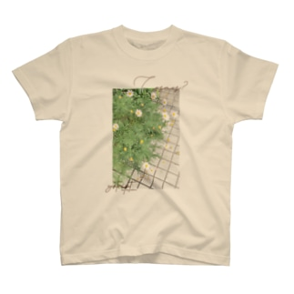 Cosmos? T-shirts