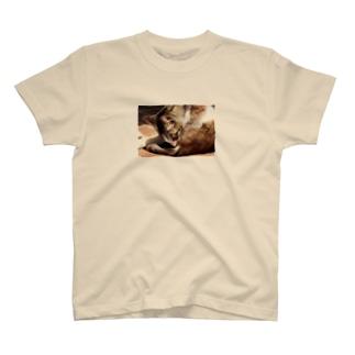 陽だまりのねこちゃん T-shirts