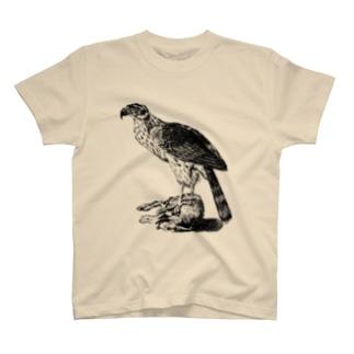 オオタカ <アンティーク・プリント> T-shirts