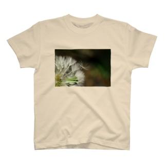 toward the future T-shirts