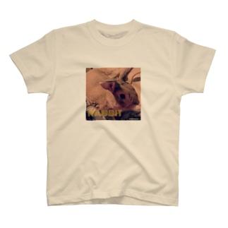 うさぎのゆんた1歳 T-shirts