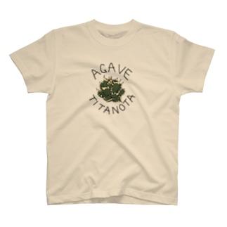 アガベ・チタノタTシャツ T-shirts