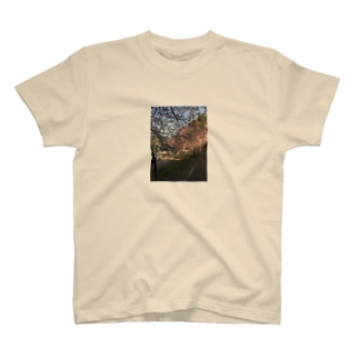 京都、大好き! T-shirts