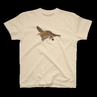 gomaphの家にいそぐエゾモモンガ T-shirts