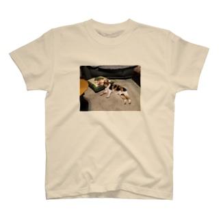 ひめ T-shirts