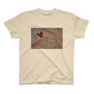 世界滅亡 T-shirts