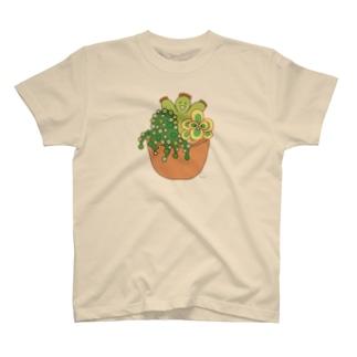 多肉植物たにくさん (テラコッタのプランターに集合) T-shirts