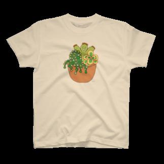 多肉植物たにくさんの多肉植物たにくさん (テラコッタのプランターに集合) T-shirts