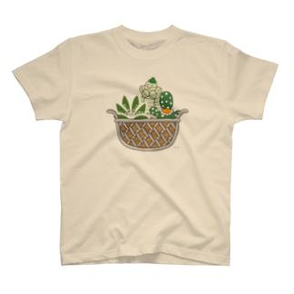 多肉植物たにくさん (ワイヤーフレームに集合) T-shirts