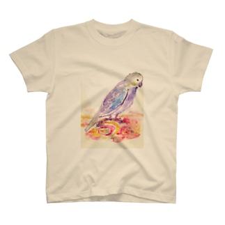 True parrots T-shirts