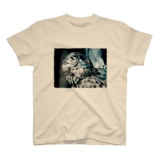 OWL2 T-shirts
