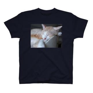 お昼寝GOMEZ Tシャツ