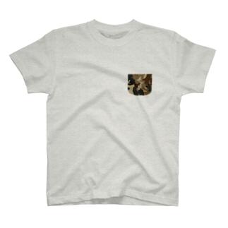 茶かめ Tシャツ