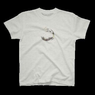 kumitamaのTAMA  Tシャツ