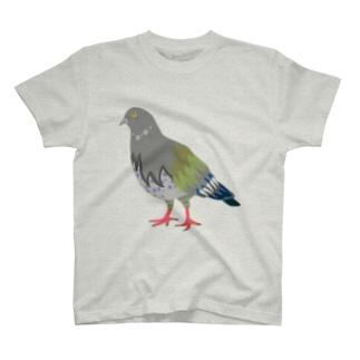 ハトをおそばに Tシャツ