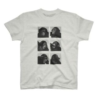 さる T-shirts