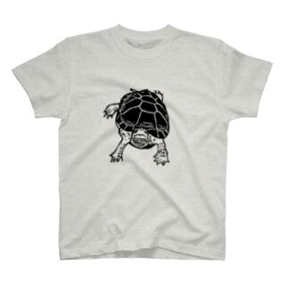 クサガメ Smiley Boggie T-shirts