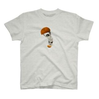 元野良猫 T-shirts