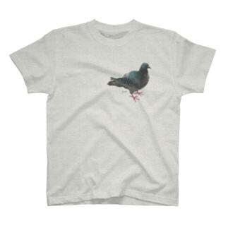 ハト(popokichi) T-shirts