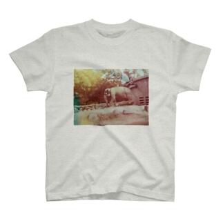 ゾウさん T-shirts