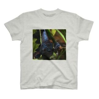 ぷぷちゃん T-shirts