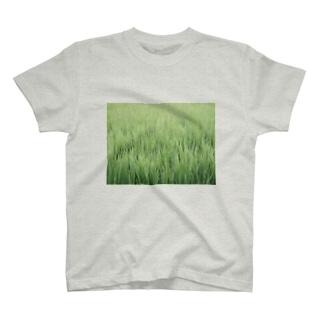 田植え(みたいな) T-shirts