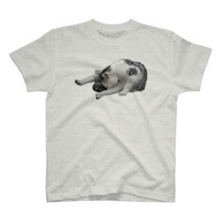 エクササイズにゃんこ T-shirts