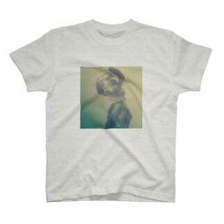 human T-shirts