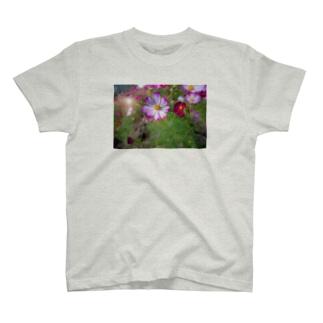 コスモスの光 T-shirts