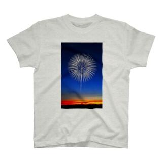 fireworks03 T-shirts