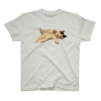 変なポーズの猫ひろしステッカー① T-shirts