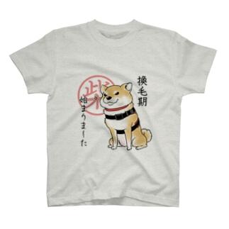換毛期/キリッ(赤柴) T-shirts
