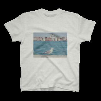 手作り作家*かめさん、兎にゃかなわないのベネチアのかもめ T-shirts