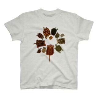 北米の亀 T-shirts