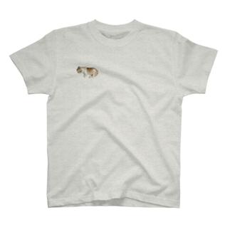 モコちゃん T-shirts