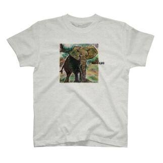 Elephant T-shirts