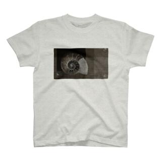 Ammonoidea2 アンモナイト2 T-shirts