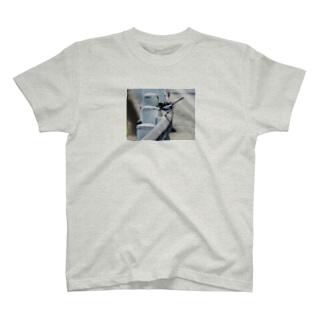 ハクセキレイ 彩度低め フォトT T-shirts