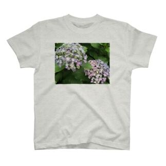梅雨の花 T-shirts
