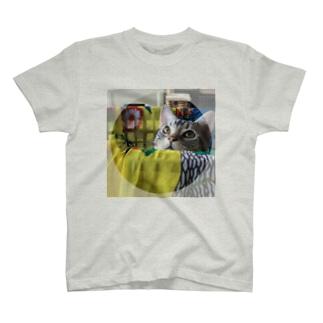 猫のロズ君_ねこネコcatの猫のロズ君 ねこネコcat T-shirts
