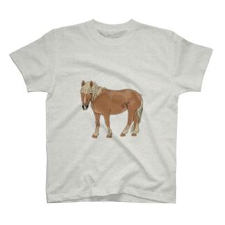 ノーマン3 T-shirts