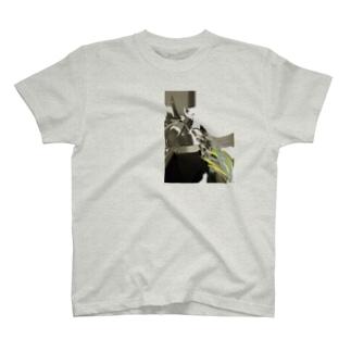 Aughos ::: T-shirts