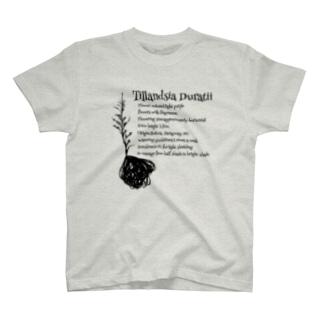ドゥラティーTシャツ T-shirts