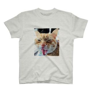茶々丸くん1号 T-shirts