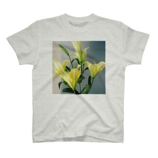 yellow lily 1 T-shirts